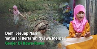 Pilunya Kisah Yatim Pencari Genjer Di Rawa-Rawa